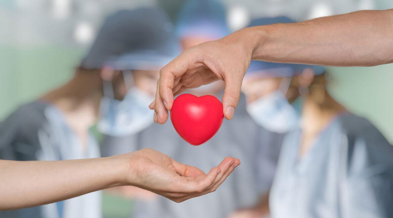 Orgaandonatie na euthanasie